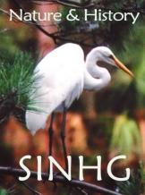 SINHG Logo facing right Save
