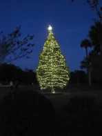 img_4738_tree_lighting