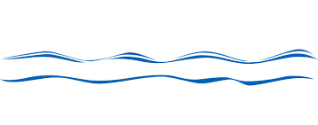 blue line border