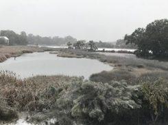 Tarpon Pond