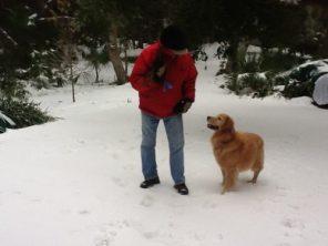 Murphy's first snow.