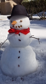SNOWMAN 1-4-18