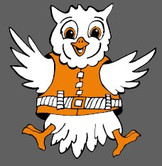 Water Wise Owl Logo