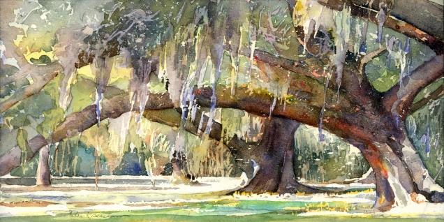Beacham, Helen K (wc) Live Oak Canopy II
