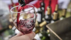 Boone Hall Wine Under the Oaks Dec 2018