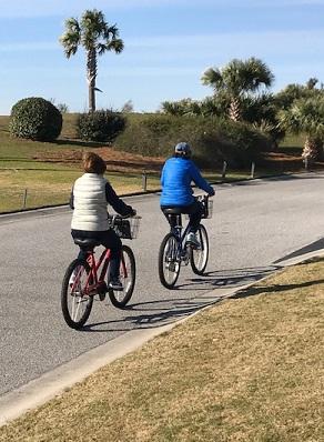 Cyclists Feb 2019