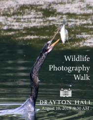 Drayton Hall Wildlife Photo Walk August 2019