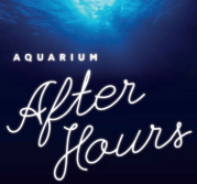 Aquarium After Hours