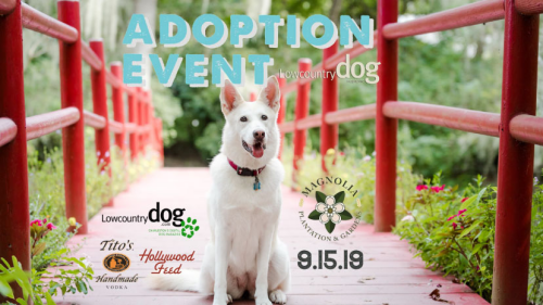Magnolia Plantation Adoption Event Sept 2019