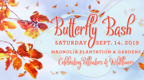 Magnolia Plantation Butterfly Bash Sept 2019