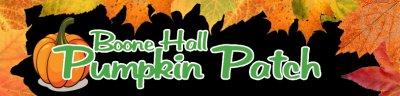 Boone Hall Pumpkin Patch Oct 2019