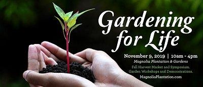 Magnolia Plantation gardening for Life Nov 2019