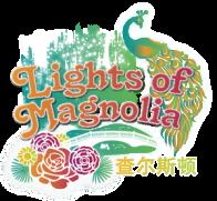 Magnolia Plantation Lights Nov 2019