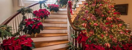 Boon Hall Christmas Dec 2019