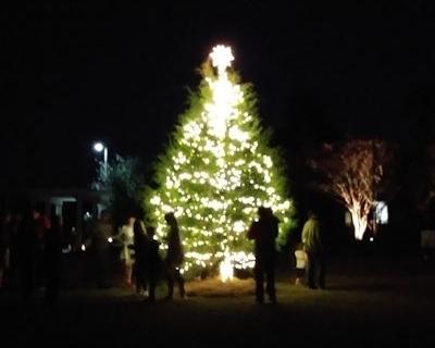 tree-lighting-2019-57.jpg
