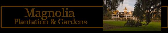 Magnolia Plantation Banner