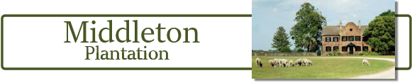 Middleton Planation Banner