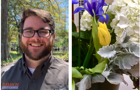 Garden Club Master Gardener Christopher Burtt March 2020