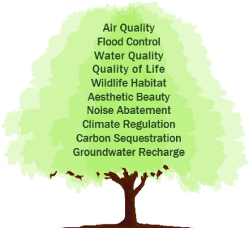 SIGSC Benefits of Green Space