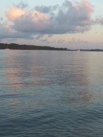 Edisto River July 18 - July 2020